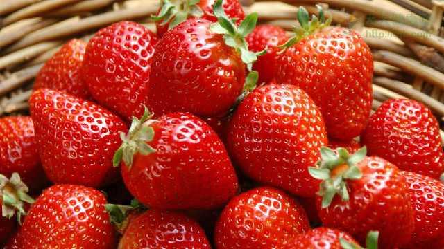 草莓挑选 春吃草莓的六个好处