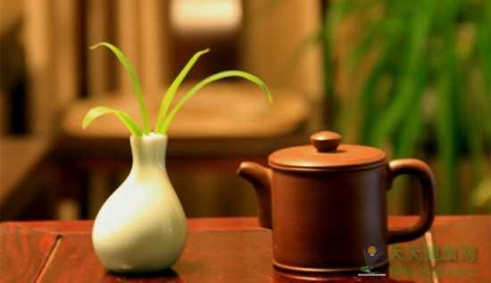 初夏喝茶消暑 找这4款茶就够了