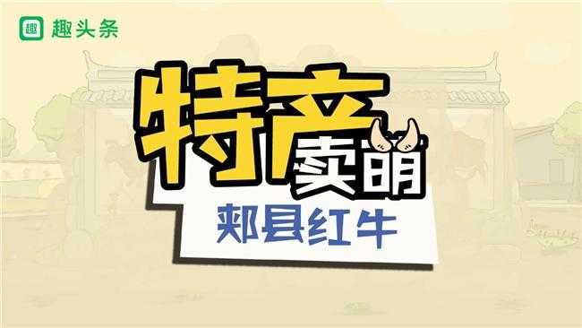 动画扶贫:中国的雪花牛肉郏县的脱贫神器