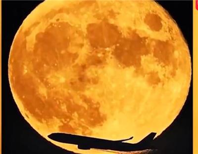 中秋月亮与飞机同框了引热议