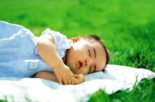 小儿过敏性紫癜的食疗方法